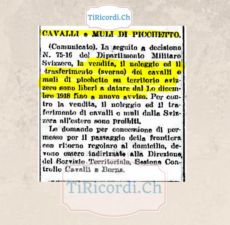 30 novembre 1918: vendita e noleggio di cavalli #100anni